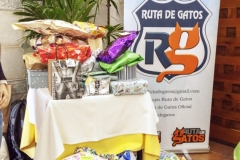 RUTA DE GATOS - EVENTO SOLIDARIO 2018 (127)